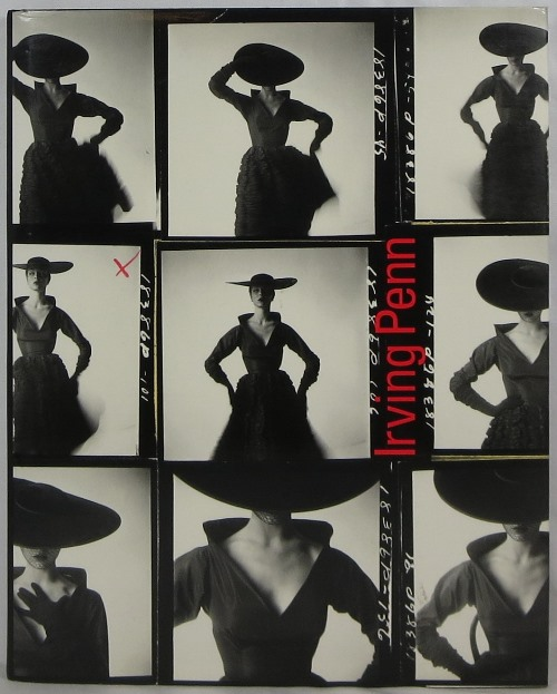 Image for Irving Penn: A Career in Photography