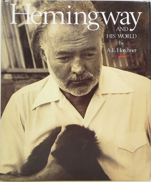 Image for Hemingway and His World