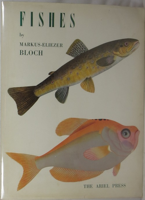 Image for Fishes