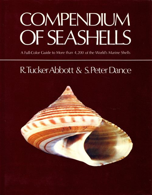 Image for Compendium of Seashells: A Full-Color Guide to More than 4,200 of the World's Marine Shells