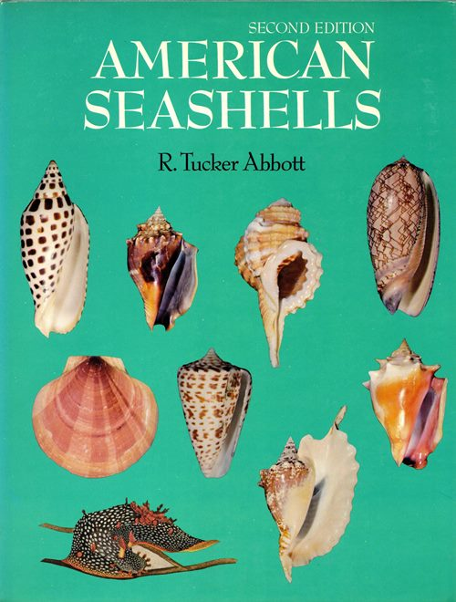 Image for American Seashells: The Marine Mollusca of the Atlantic and Pacific Coasts of North America