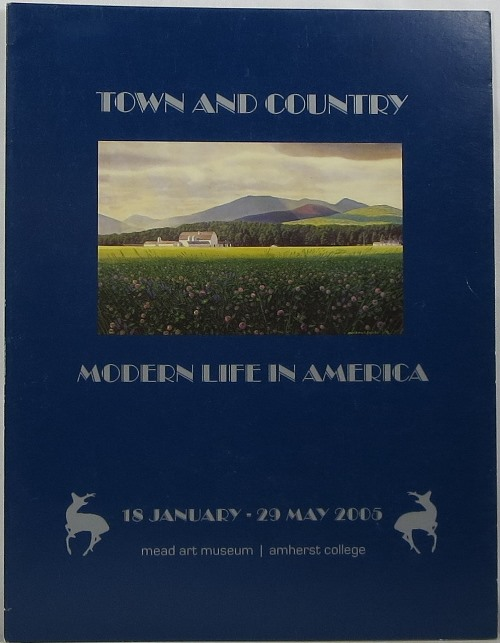 Image for Town and Country: Modern Life in America