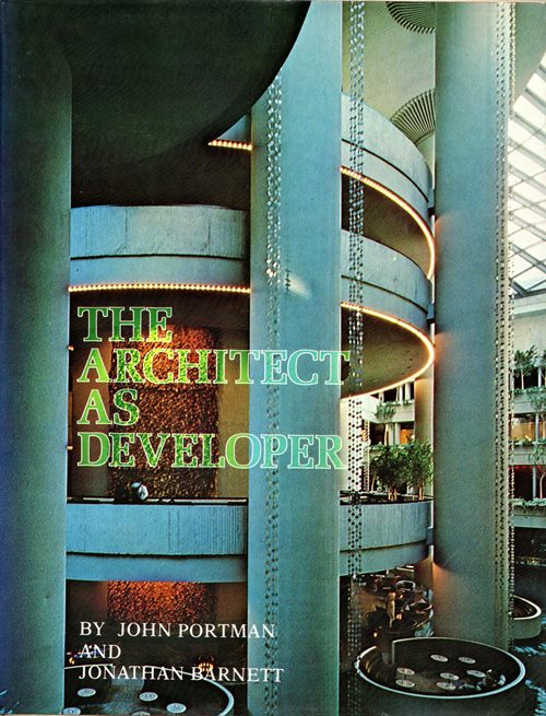 Image for The Architect as Developer